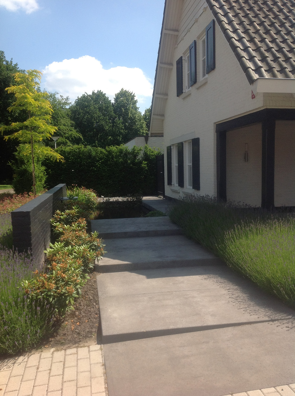 Bomen rooien moderne strakke tuin aanleggen tilburg for Moderne tuin aanleggen
